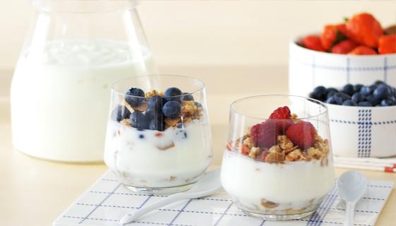 Yogurt bianco abbattitore di temperatura - Abbattitore per casa ...